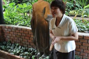 Тайский гид