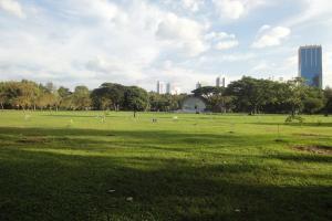 Луг в Лумпини парке в Бангкоке