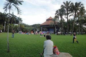 Сцена в Люмпини парке