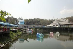 Аквариум в зоопарке Чианг Май