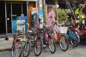 Аренда велосипедов в Чианг Май