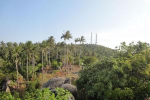 Виды на остров Ко Тао