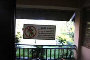 Предупреждение о мартышках в Railay Princess Resort
