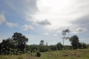 Восточная побережье Ко Ланта