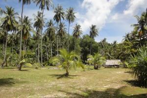 Пляж на острове Пхи-Пхи Loh Moo Dee