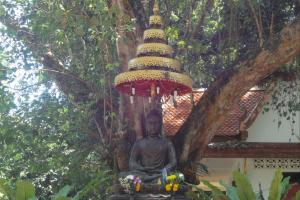 Храм - Ват Сапам