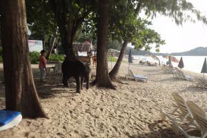 Пляж Лагуна Бич на Пхукете