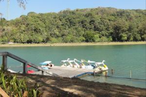 Катамараны на озере
