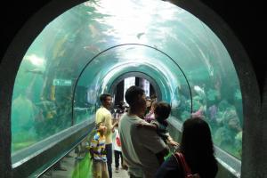 Океанариум на Пхукете