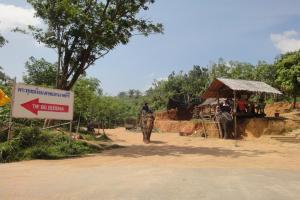 Деревня слонов рядом с Биг Будда