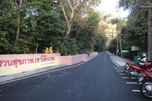 Начало дороги у подножия горы Monkey Hill