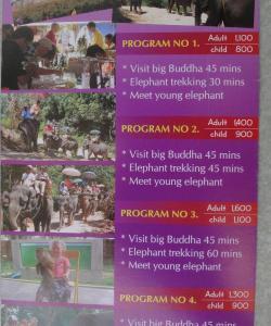 Экскурсия Большой Будда и катание на слонах на Пхукете