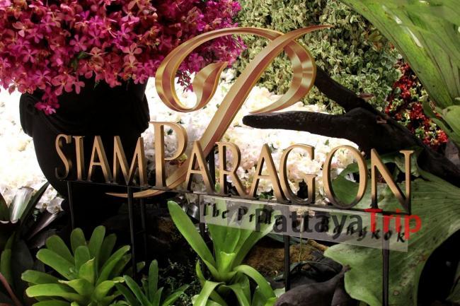 Siam Paragon в Бангкоке