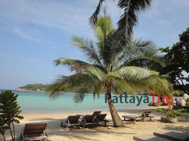 Freedom Beach - пляж на Ко Тао
