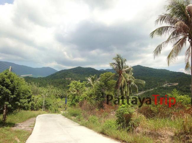Дорога на Пангане