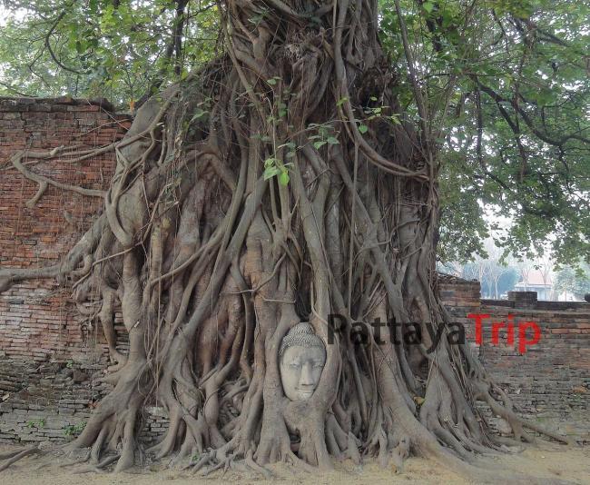 Wat Mahathat в Аюттайе