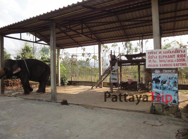 Деревня слонов (Пай)