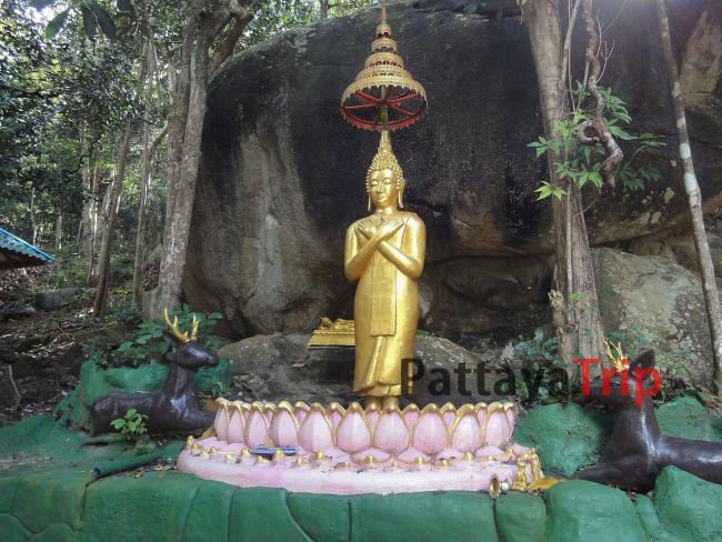 Wat Paa Sang Tham (остров Панган)