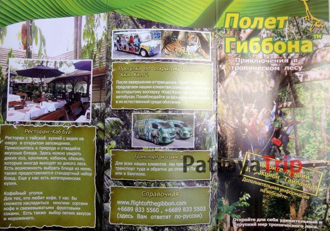 Полет Гиббона - экскурсионный тур в Паттайе