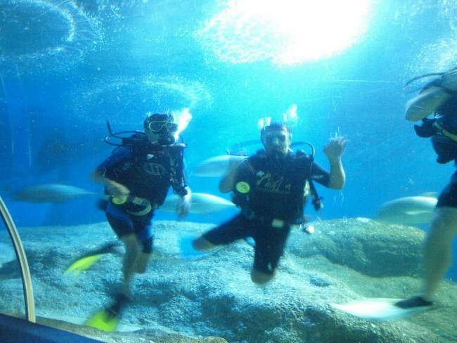 Погружение в аквариуме
