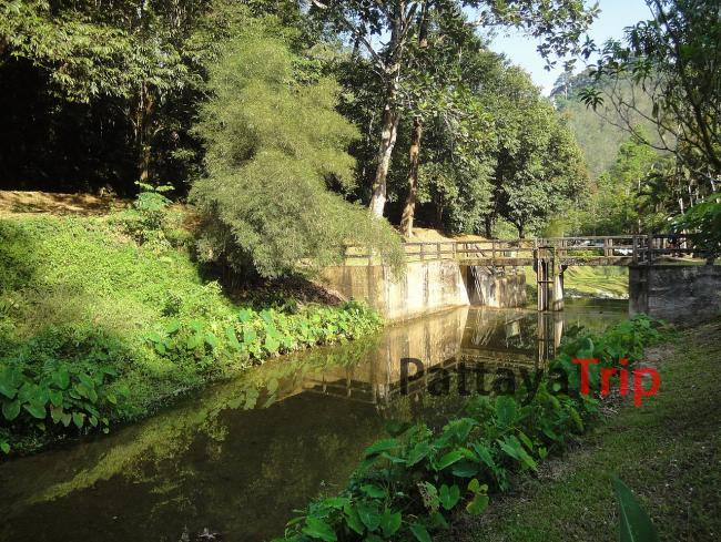 Парк Raman Forest (Пханг Нга)
