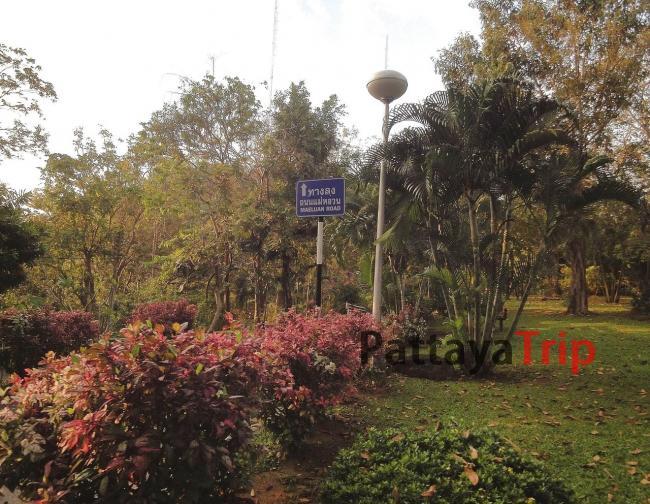 Rang Hill