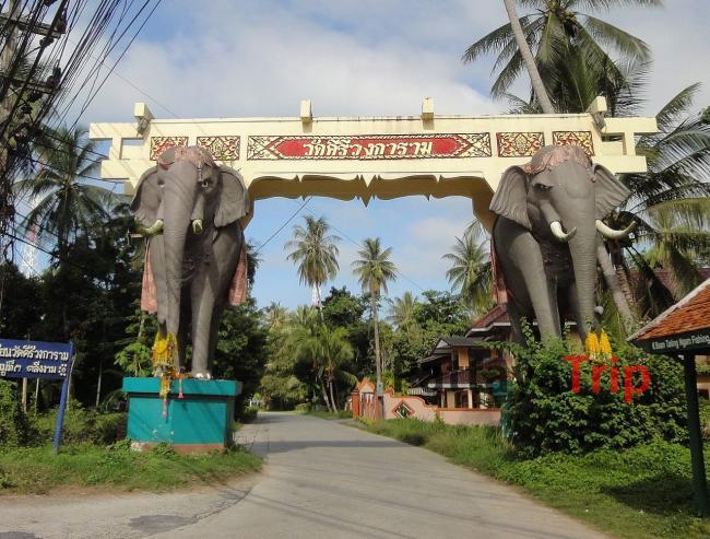 Ворота в виде слонов