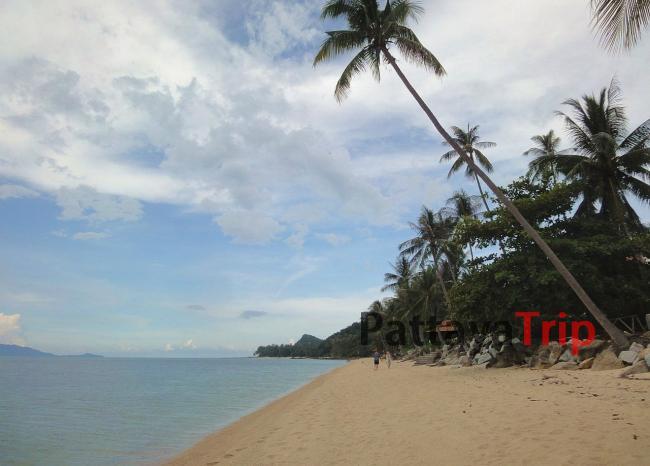 Пляж Bang Por)