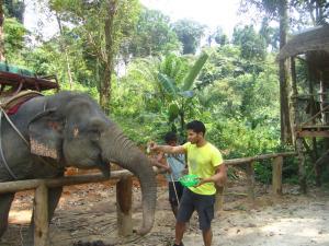 Экскурсия в Кхао Лак на Пхукете