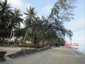 Пляж Тонг Янг на Самуи