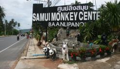 Вход в Центр обезьян